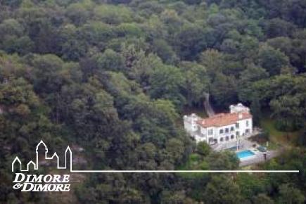 Villa d  'époque, face au lac Majeur