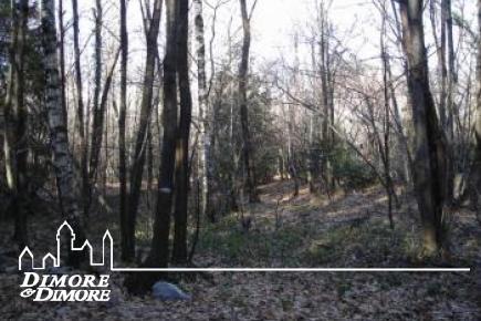 Terreno boschivo a Verbania-Suna Località Cavandone